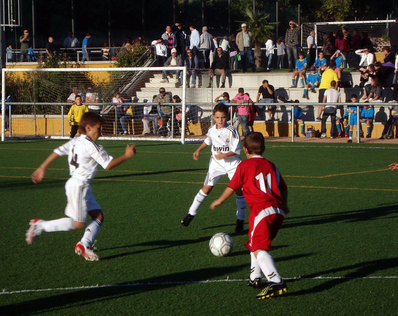 http://cdsannicasio.files.wordpress.com/2009/10/torneo1.jpg