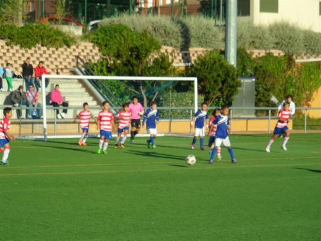 VIII Torneo Benjamín Fútbol 7 - San Nicasio 2013