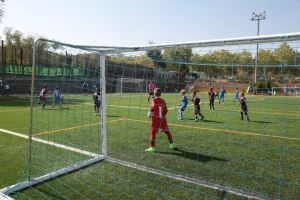 XII Torneo Benjamin Futbol 7 San Nicasio 2017 (4)